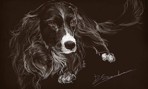 Digital Sketch - Black and White