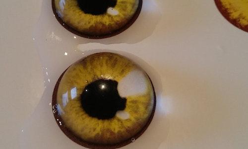 Realistic costume eyes